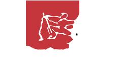 Sunny Tang Martial Arts Logo
