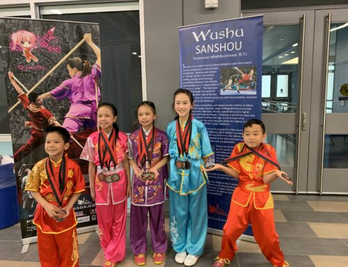 2019 Wushu Sports Festival and National Wushu Championships